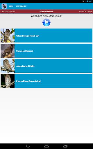 Birds of Prey Sounds|玩教育App免費|玩APPs