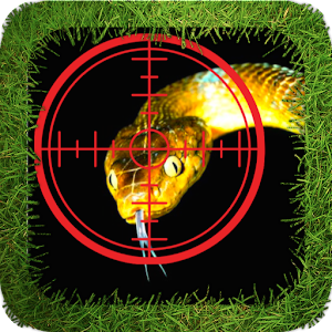 Snake Hunter for PC and MAC