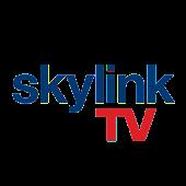 Magazín Skylink TV