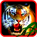 Angry Tiger Cat Jungle Roar icon