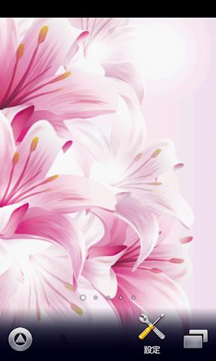 flower wallpaper ver212