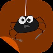 Spider Feeder