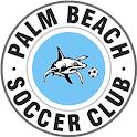 Palm Beach Soccer Club icon
