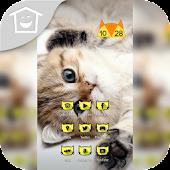 Naughty Kitten Cat Mew Theme