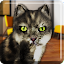 Talking Cat Funny 1.3 APK for Android
