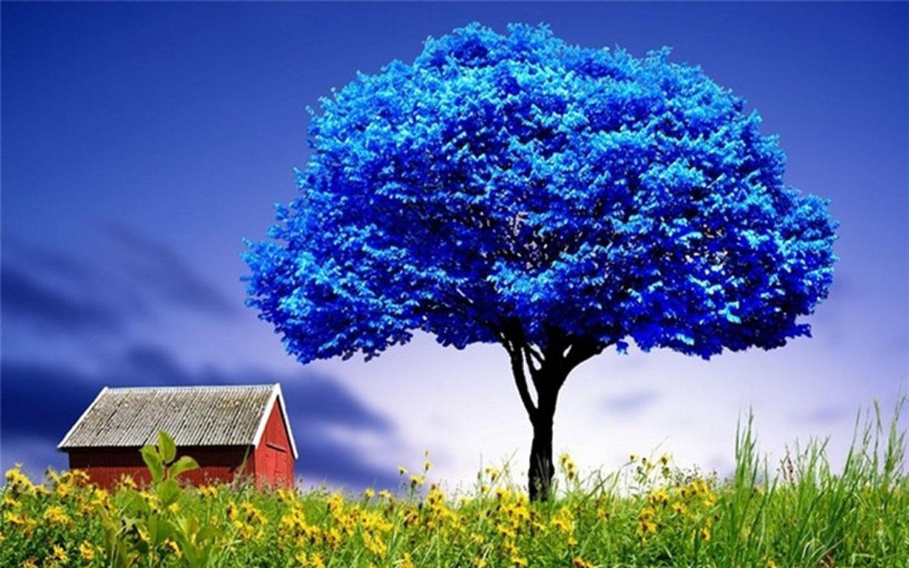3d wallpaper trees - photo #14