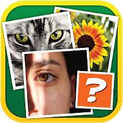 4 Pics 1 Odd 1.0.2 APK for Android