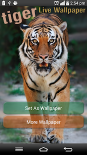 download tiger live wallpaper apk on pc download android