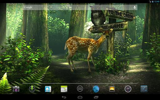 تطبيق خلفية متحركة للغابات والاشجار Forest جميله بوابة 2014,2015 3atUxcoek5e-45ldsSZZ