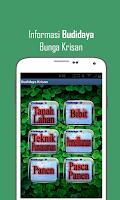 Screenshot of Budidaya Bunga Krisan