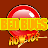 Bed Bugs How To