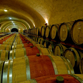 Spirits in the Cellar by Barbara Brock - Buildings & Architecture Other Interior ( wine cellar, wine barrels, underground cellar, winery )