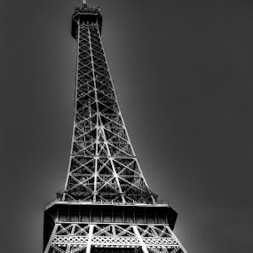 Eiffel Tower by Ned Kelly - Buildings & Architecture Public & Historical ( eiffel tower, paris, france,  )
