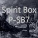 Spirit Box P-SB7 EMF Sensor icon