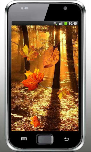 Autumn Sunrise live wallpaper