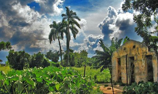 キューバの壁紙