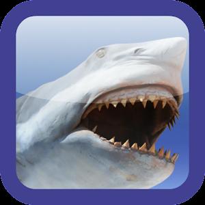 Shark Revenge Attack 解謎 App Store-癮科技App