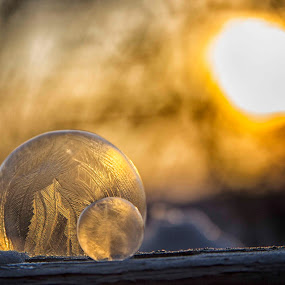 Frozen Bubble by Charles Anderson Jr - Artistic Objects Other Objects ( bubbles,  )
