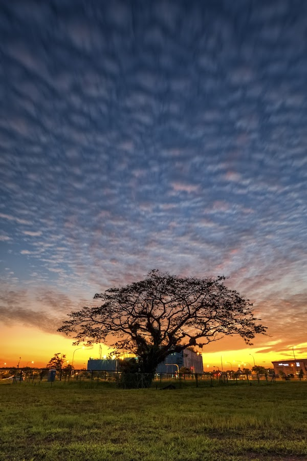 One hell of a way to end the day. by Wen Sayshello - Landscapes Sunsets & Sunrises ( nature, sunset, beautiful, landscapes, sun, singapore )
