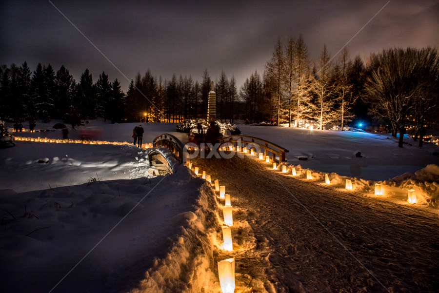 Luminaria Night by Joseph Law - News & Events World Events ( devonian garden, alberta, candles, walking paths, the love one, memory, luminaria night, thousands )