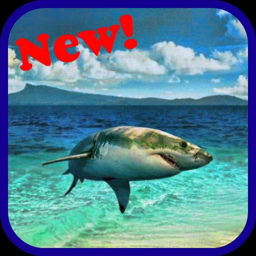 Shark Puzzle Game 解謎 App LOGO-APP試玩