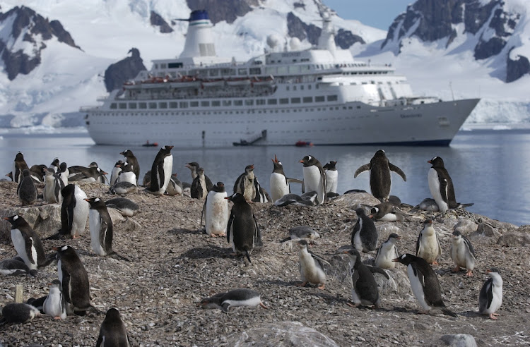 And here's the ship as seen from the penguin colony. Passengers go ashore in small groups to wander in their presence.