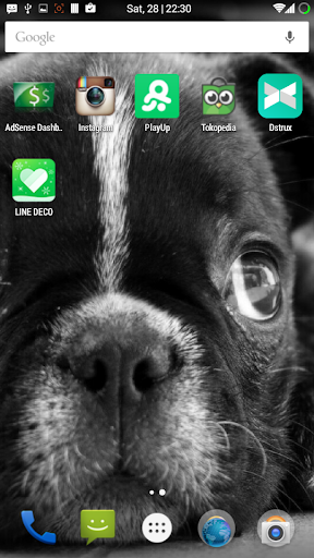 玩個人化App|Dogs Free Wallpaper免費|APP試玩