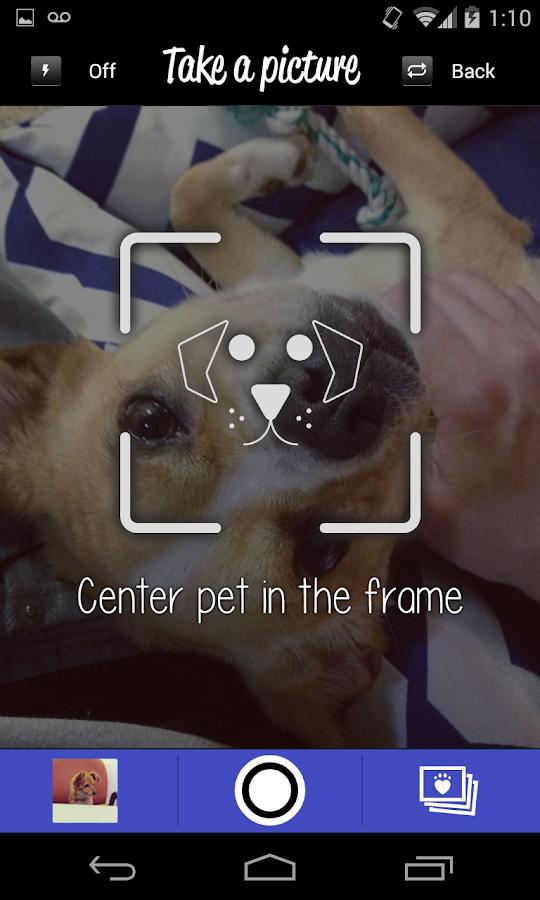 LikeThat Pets: Adopt a Pet - screenshot