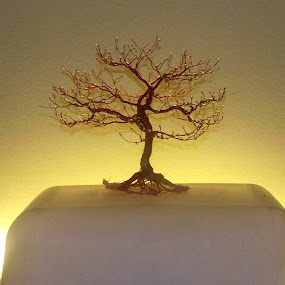 redoak by Brian Boyer - Artistic Objects Other Objects ( recycled tv, copper wire art, trees, sculpted wire art )