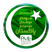 3d Muslim League-Nawaz Flag