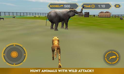 野生非洲猎豹模拟器