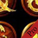 DDO Puzzle Solver (Pro) icon