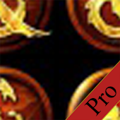DDO Puzzle Solver (Pro)