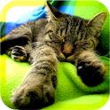 baby sleep relaxing sounds icon