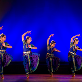 Dance Ensemble by Amitabh Mukherjee - People Musicians & Entertainers ( ensemble, classical, performance, colors, rich, lehenga, indian, south india, bharatnatyam, dance, stage )