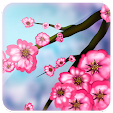 Spring Keyb.. file APK for Gaming PC/PS3/PS4 Smart TV