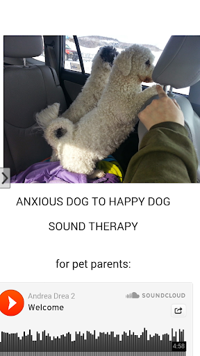 Anxious Dog Sound Machine