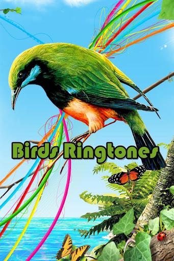 Birds RingTones