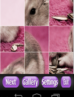 Hamster Puzzle Games