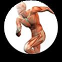 人体结构图 icon