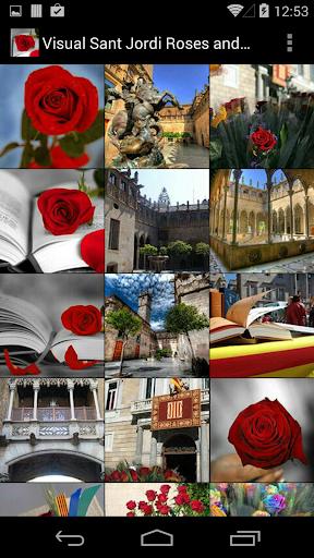 Visual Sant Jordi Roses Books