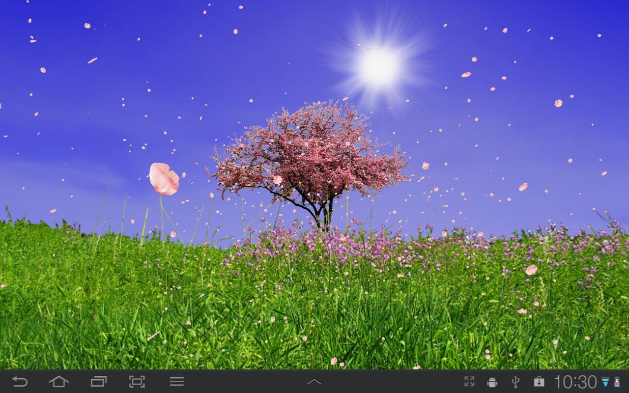 spring trees live wallpaper android apps on google play