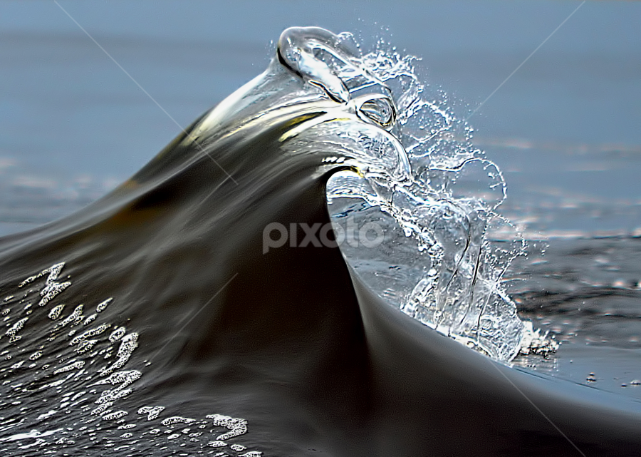 The Wave by Diane Davis - Landscapes Beaches ( dolphin, waves,  )
