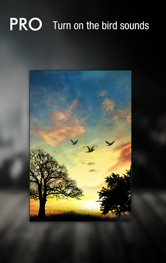 Sunset Hill Pro Live Wallpaper- tangkapan layar