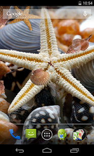 Sea shells Live Wallpaper- screenshot thumbnail