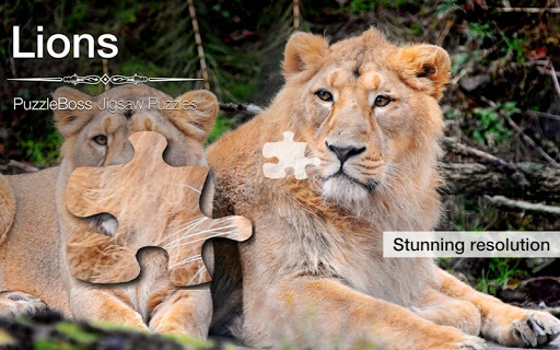 Lion Jigsaw Puzzles Demo