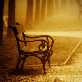 by Sanja Dedić - City,  Street & Park  City Parks ( public, bench, furniture, object )