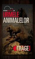 Screenshot of URMELE ANIMALELOR