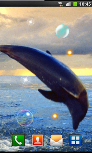 Sea Dolphins HD live wallpaper