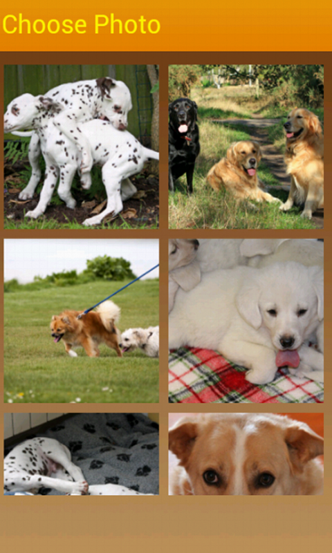 Doggies Slider Photo Puzzle- screenshot